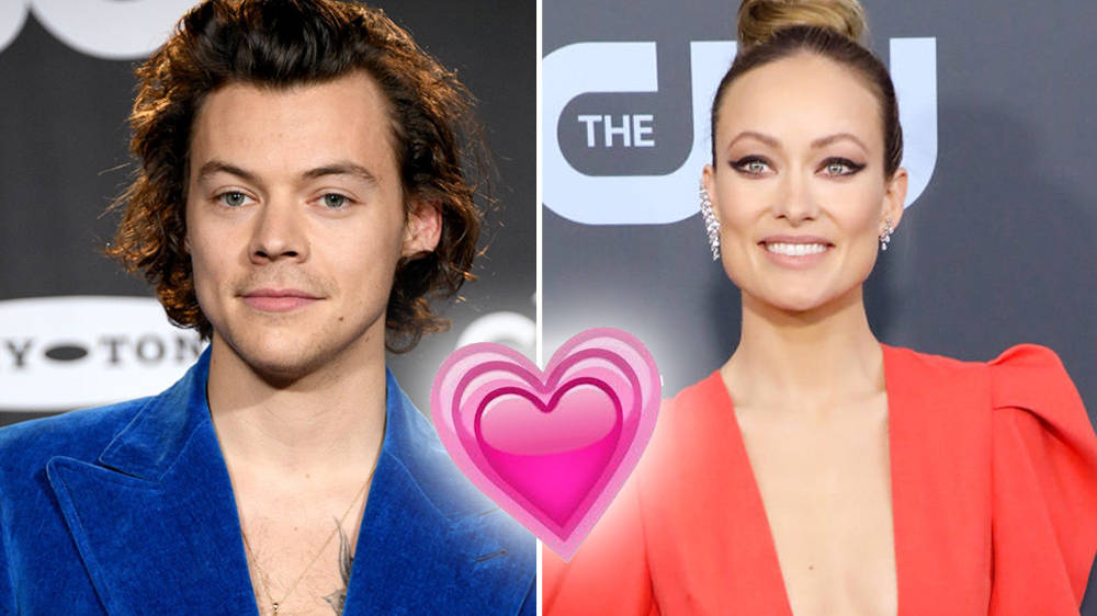 Harry Styles And Girlfriend Olivia Wildes Relationship