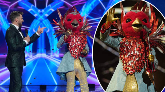 The identity of Robin on The Masked Singer remains a secret