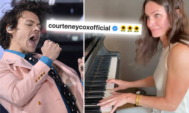 Harry Styles' fans really want to make sure he sees Courteney Cox's video.