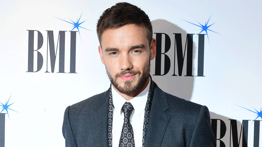 Liam Payne Net Worth: One Direction Star's Earnings ...