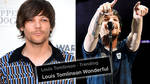 Louis Tomlinson fans have given the singer an incredible week