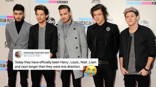 One Direction kicked off their solo careers in 2015.