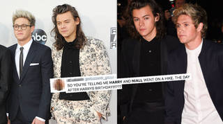 Harry Styles & Niall Horan's fans were sent into meltdown after a photo went viral.