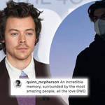 Harry Styles's 'Don't Worry Darling' stunt double revealed