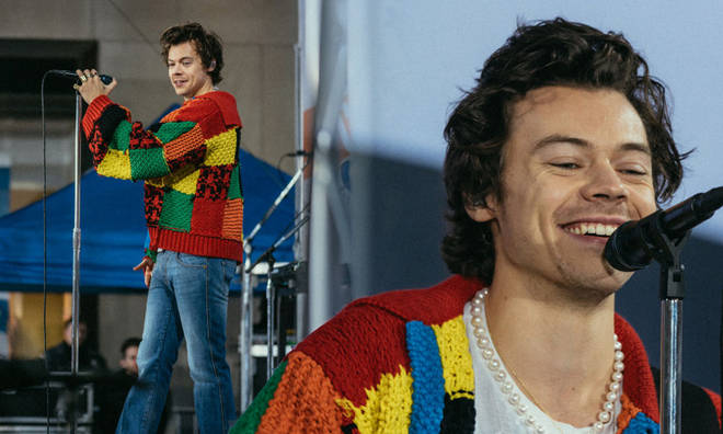 Harry Styles' knitted cardigan became a phenomenon of its own