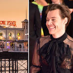 Harry Styles' film My Policeman are looking for extras