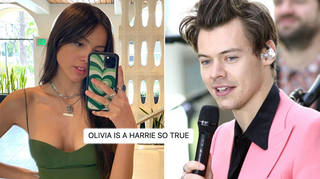 Harry Styles were freaking out over the idea of him remixing 'Drivers License'.