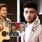 Zayn Malik called Niall Horan his favourite 1D bandmate