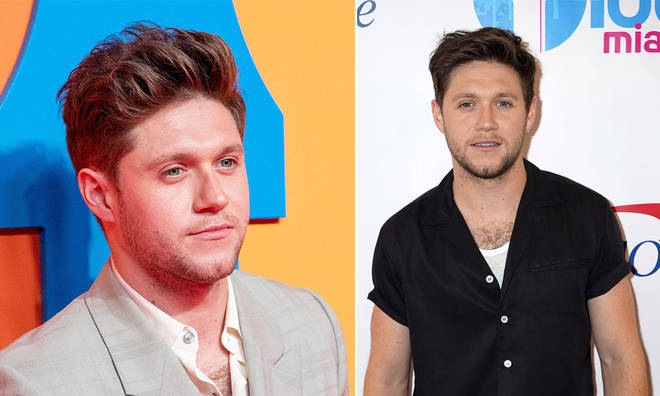 A trespasser allegedly entered Niall Horan's home last year, before attempting to return the next day.