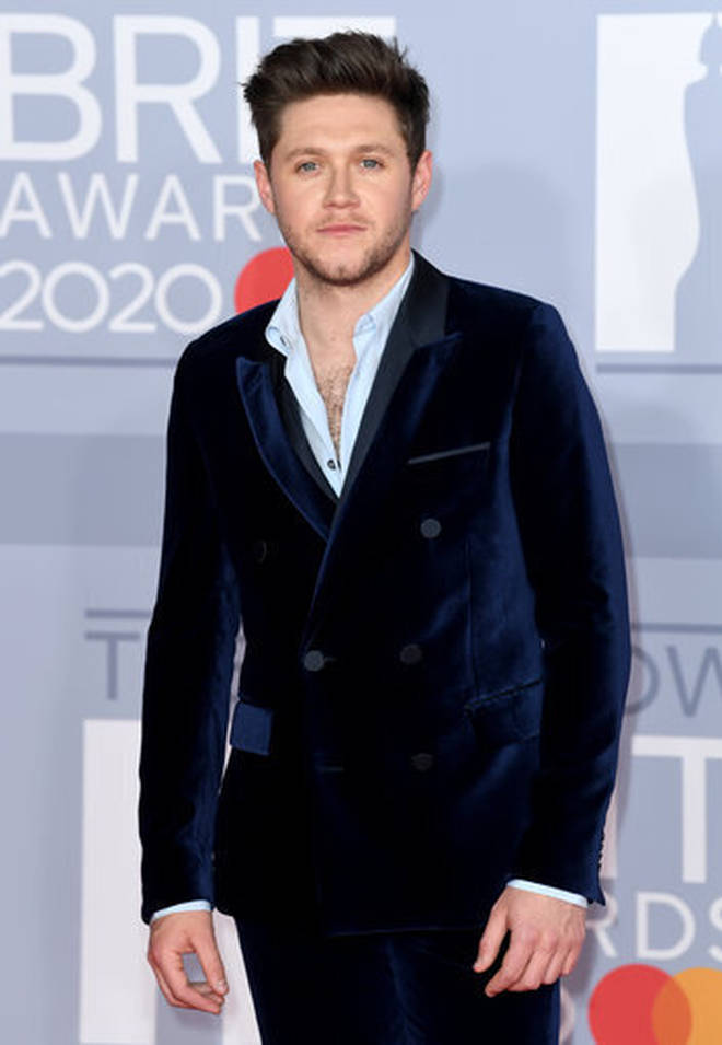 One Direction's Niall Horan has now reached global success following his stint on X Factor.