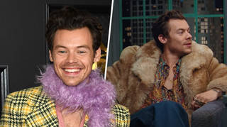 Harry Styles stars in Gucci's Beloved campaign