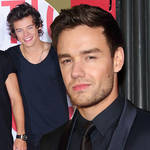 Harry Styles recently called Liam Payne for a catch-up