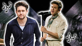 Niall Horan has asked fans to continue supporting his music