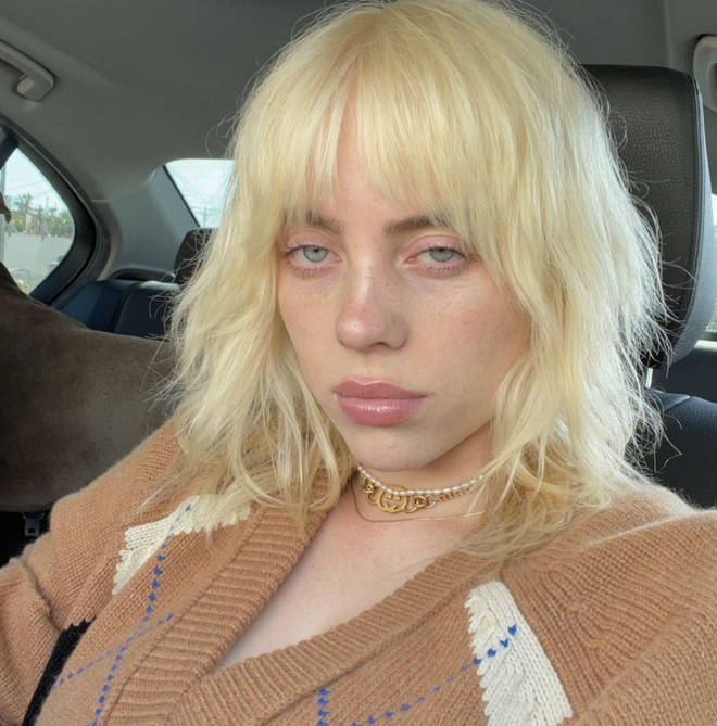 Billie Eilish captioned her follow-up selfie 'I'm tired' amid the backlash