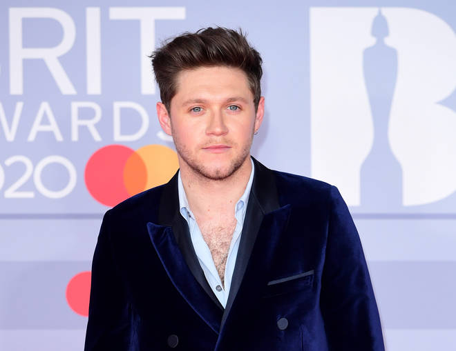 Will Niall Horan be featured on Taylor Swift's 'Red' re-release?