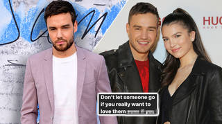 Liam Payne shared a series of cryptic posts about ex Maya Henry