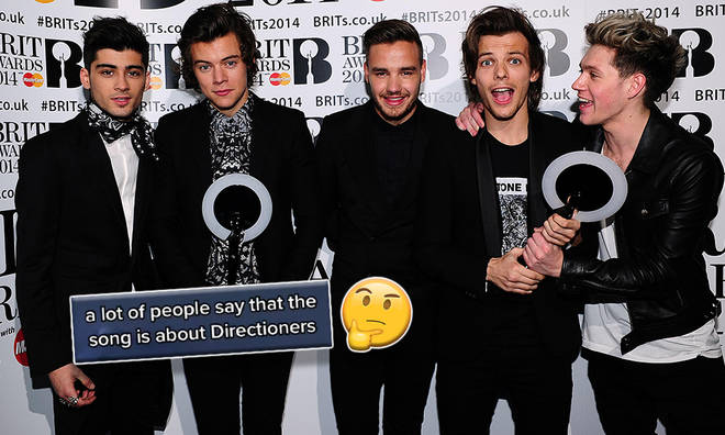 Is 'Steal My Girl' about Directioners? 1D fans think so!