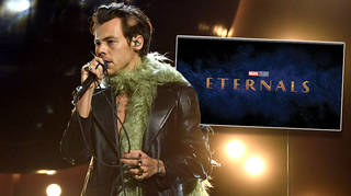 Why Harry Styles fans are still adamant he'll be in The Eternals