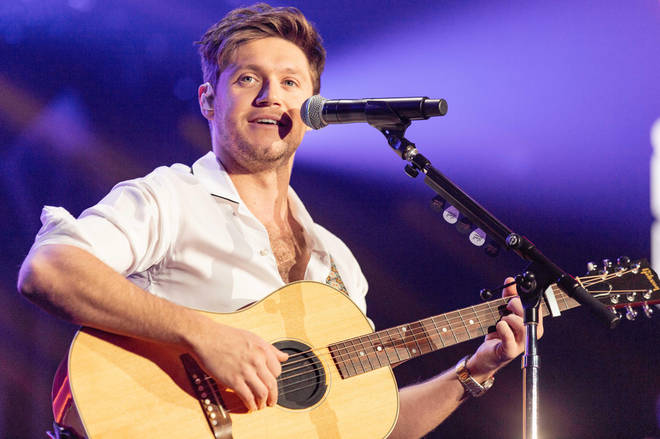 Fans were living for the Niall Horan and Lizzo video