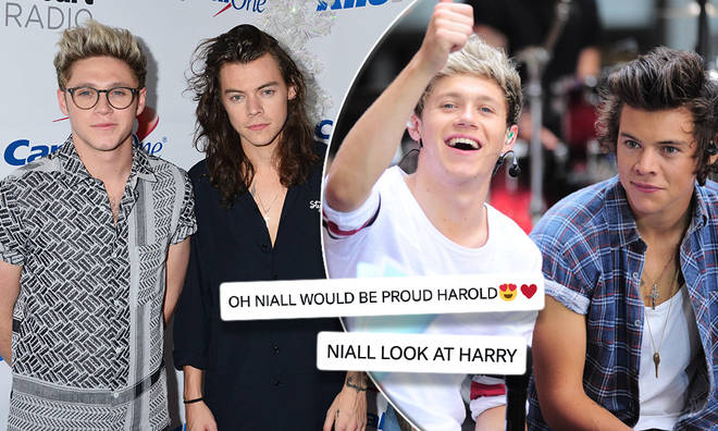 1D fans are hoping for a Harry Styles and Niall Horan reunion