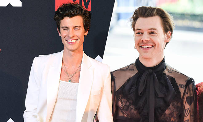 Shawn Mendes was asked about Harry Styles in a lie-detector challenge