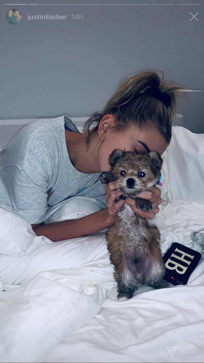 Hailey Bieber shows off her new pup.