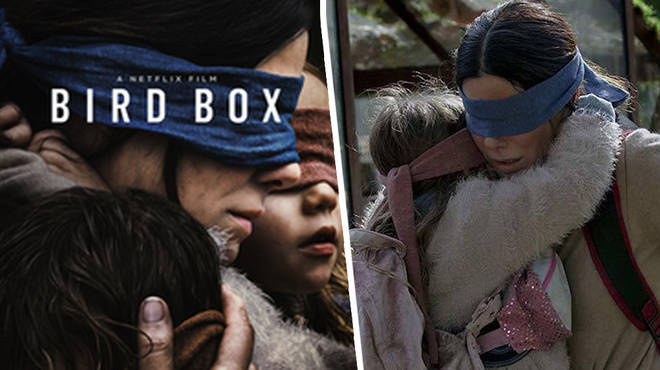 There could be a Bird Box sequel in the future.