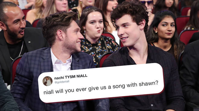 Shawn Mendes confirms a collaboration with Niall Horan
