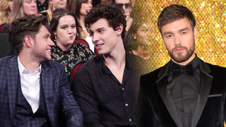 Liam Payne wants to join in on Shawn Mendes and Niall Horan's collaboration