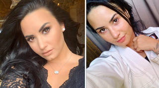 Demi Lovato has reportedly checked back into rehab