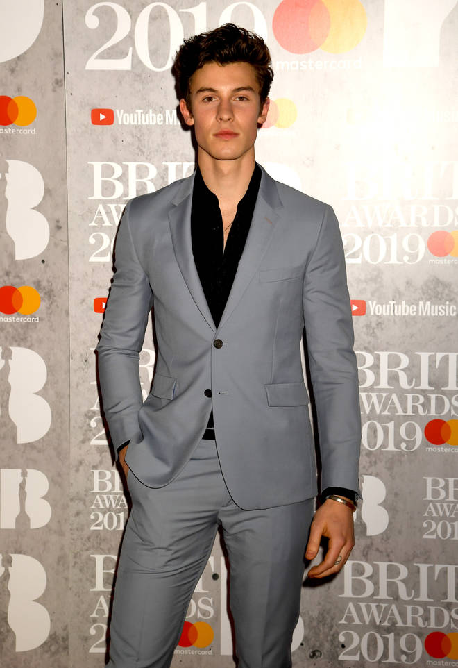 Shawn Mendes red carpet look at 2019 BRITs