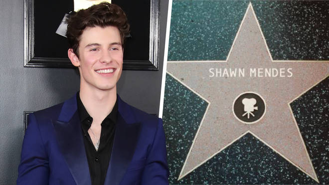 Shawn Mendes Tour 2020.Shawn Mendes Reveals Upcoming Movie Role Capital