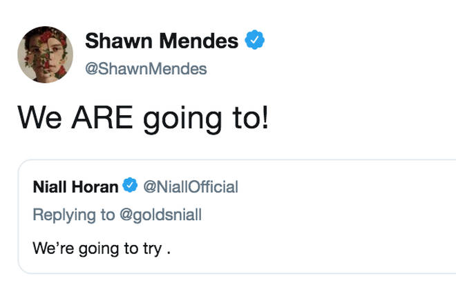 Niall Horan and Shawn Mendes are going to collaborate at some point