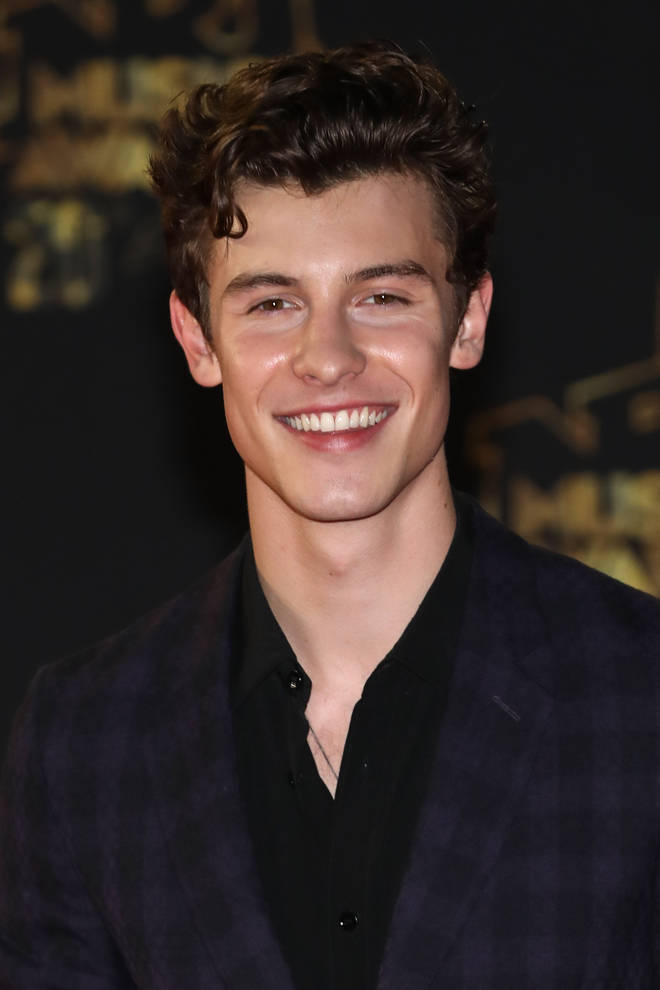 Shawn Mendes' curly locks have become his trademark