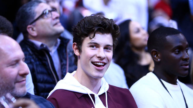 Shawn Mendes' fans are sharing a viral trend with his 'Stitches' video