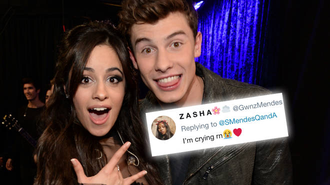 Shawn Mendes and Camila Cabello were spotted hanging out together