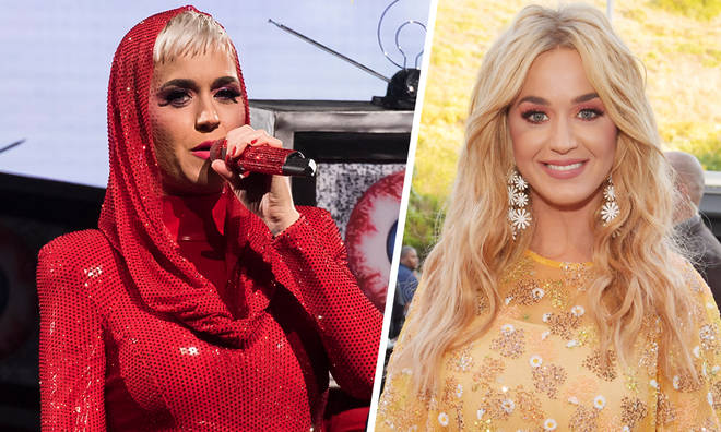 Katy Perry won't be going on any world tours
