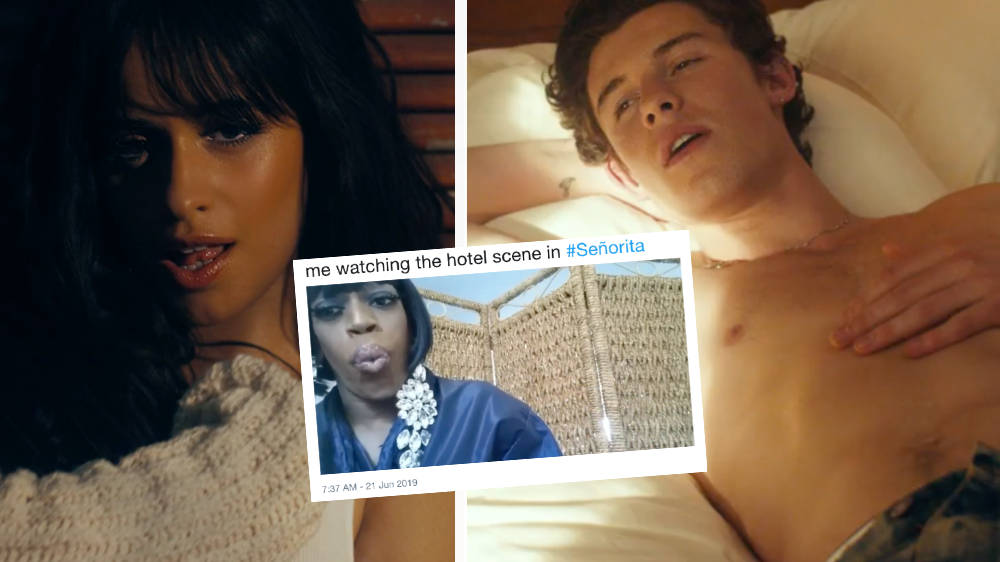Shawn Mendes & Camila Cabello's 'Señorita': Hilarious Memes & Reactions To The Music Video
