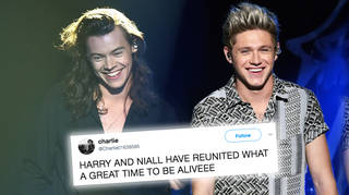 Harry Styles and Niall Horan met at The Eagles London concert