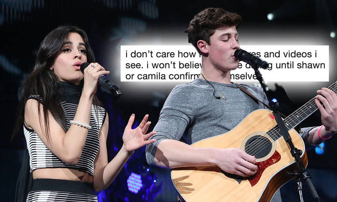 Shawn Mendes and Camila Cabello are yet to confirm they're dating