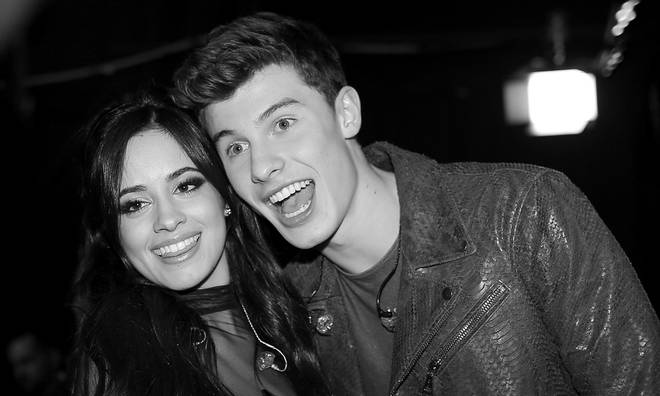Shawn Mendes and Camila Cabello's relationship is 'moving quickly'