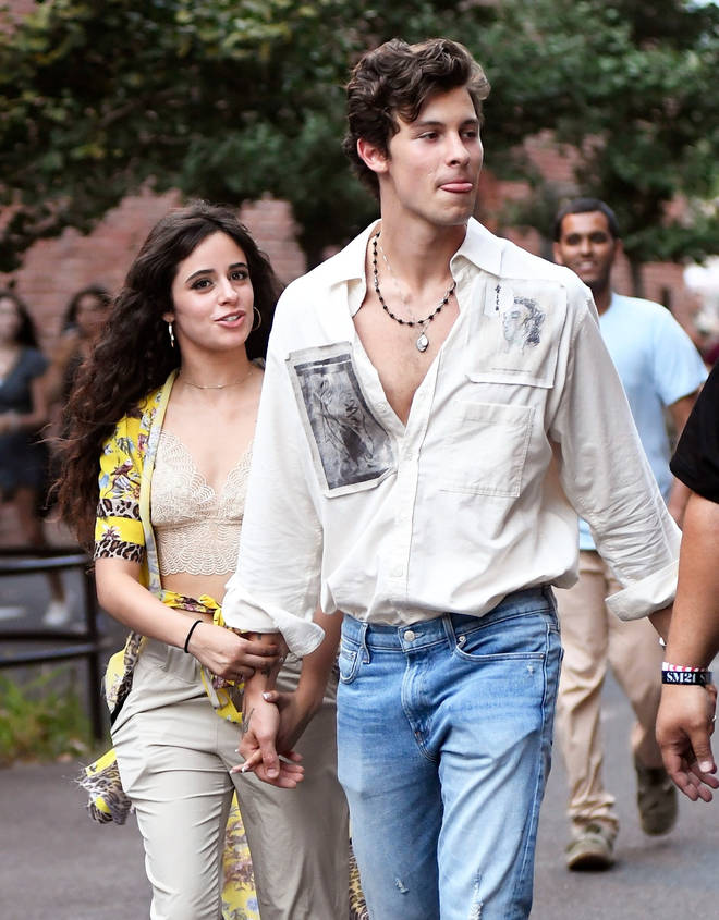 Camila Cabello and Shawn Mendes holding hands in New York