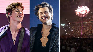 Shawn Mendes played Harry Styles at his concert