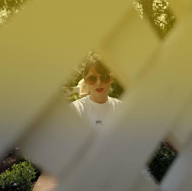 "Taylor Swift captioned her photo, ""Okay NOW there are five holes in the fence"""