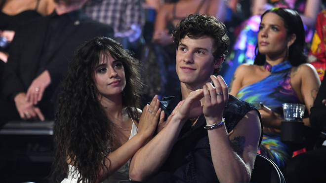 Shawn Mendes and Camila Cabello are rumoured to be dating
