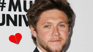 Niall Horan's new album will drop in 2020.