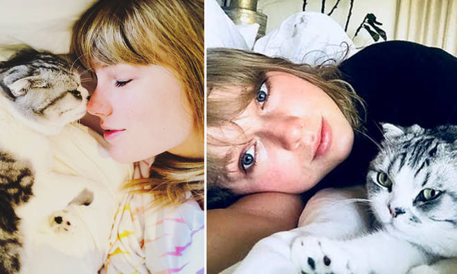 Taylor Swift admits to being lazy and loves to sleep