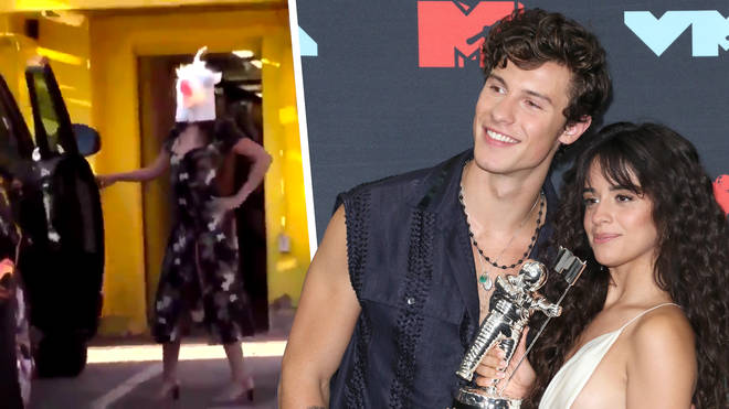 Shawn Mendes and Camila Cabello wore masks to hide from photographers