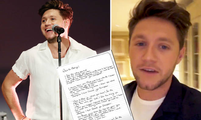 Niall Horan kicks off his 'Nice To Meet Ya' fan challenge