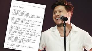 Niall Horan's new single 'Nice To Meet Ya' lyrics